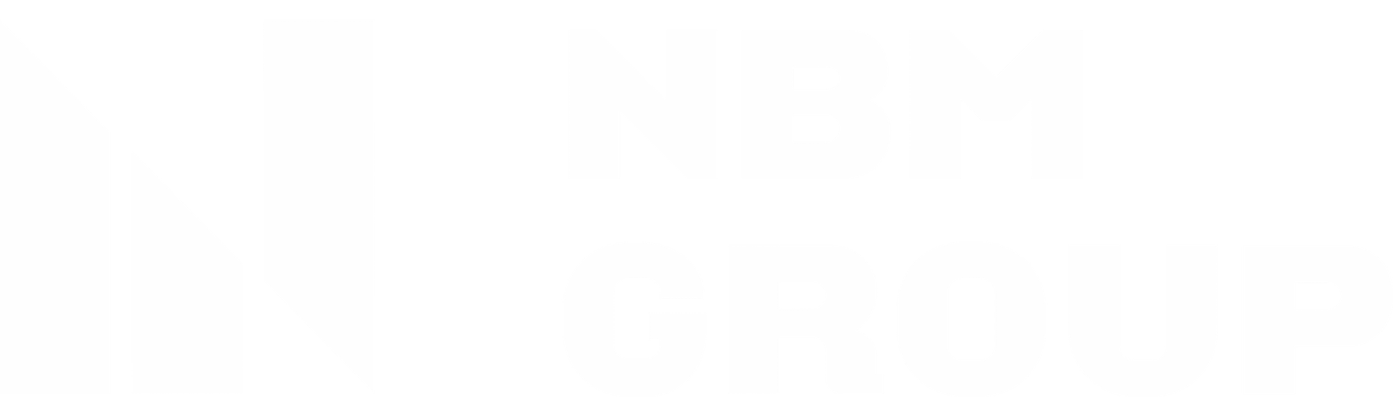 Logo NBM Group